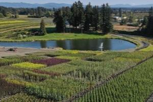 Plant Nursery Overhead Image